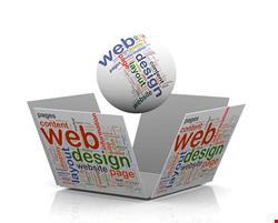 وب سایت سفارشی حرفه ای